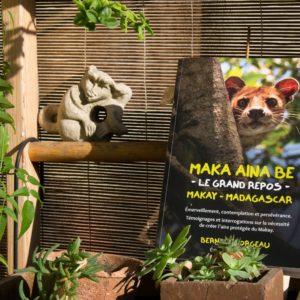 Livre sur Madagagascar